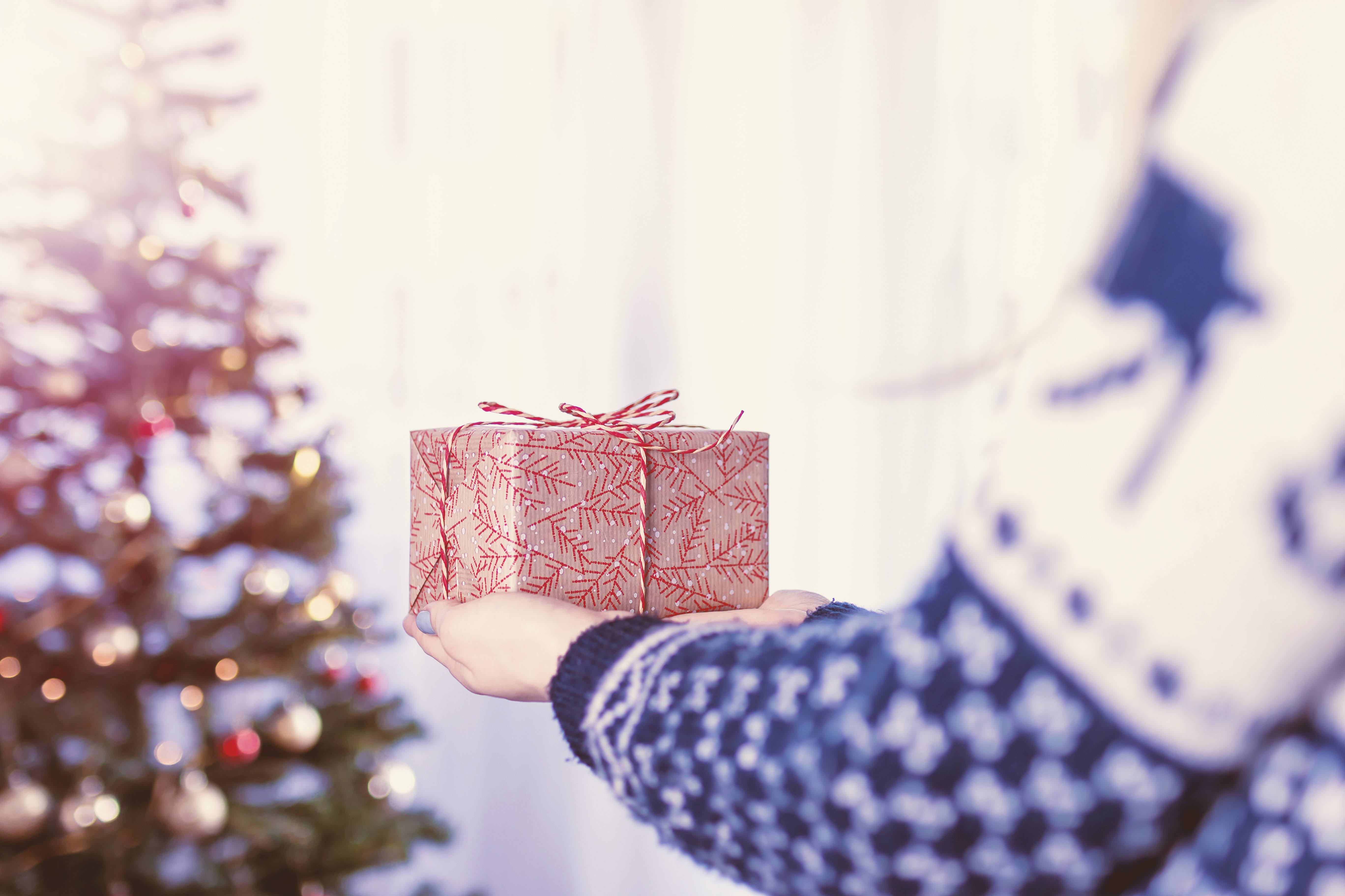Maryland Charities That Need Your Support This Holiday Season - Koch ...